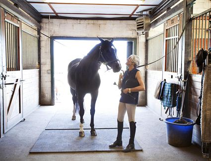 Horse Care Resources For The Basics - Before and after achorse stable