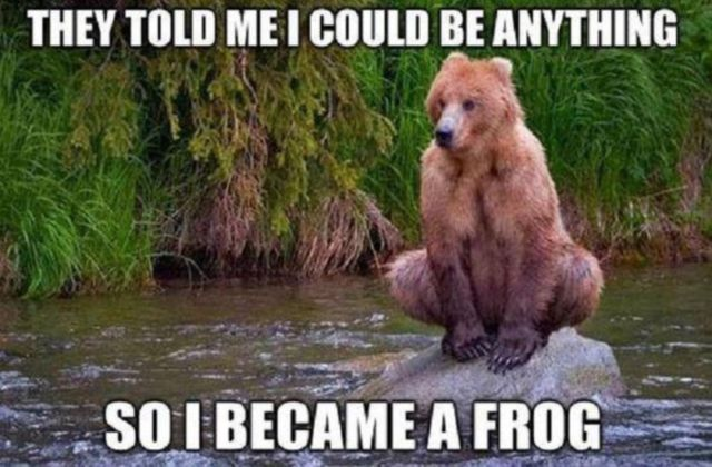 Funniest Animal Memes In The World : Funny animal captions part pics amazing creatures