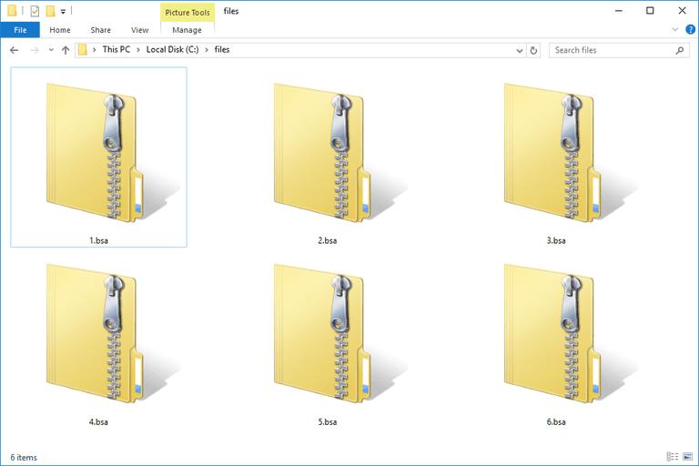 BSA Files
