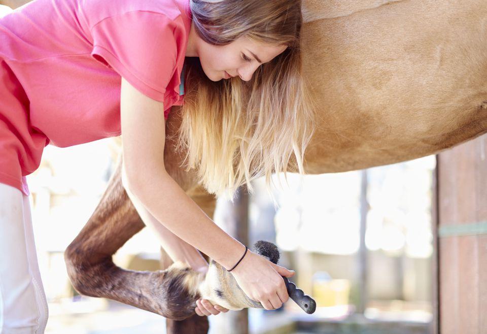 Teenage girl cleaning hoof of a horse