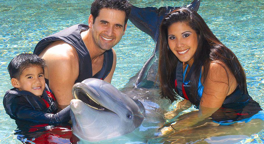 Dolphin Quest, Big Island, Hawaii
