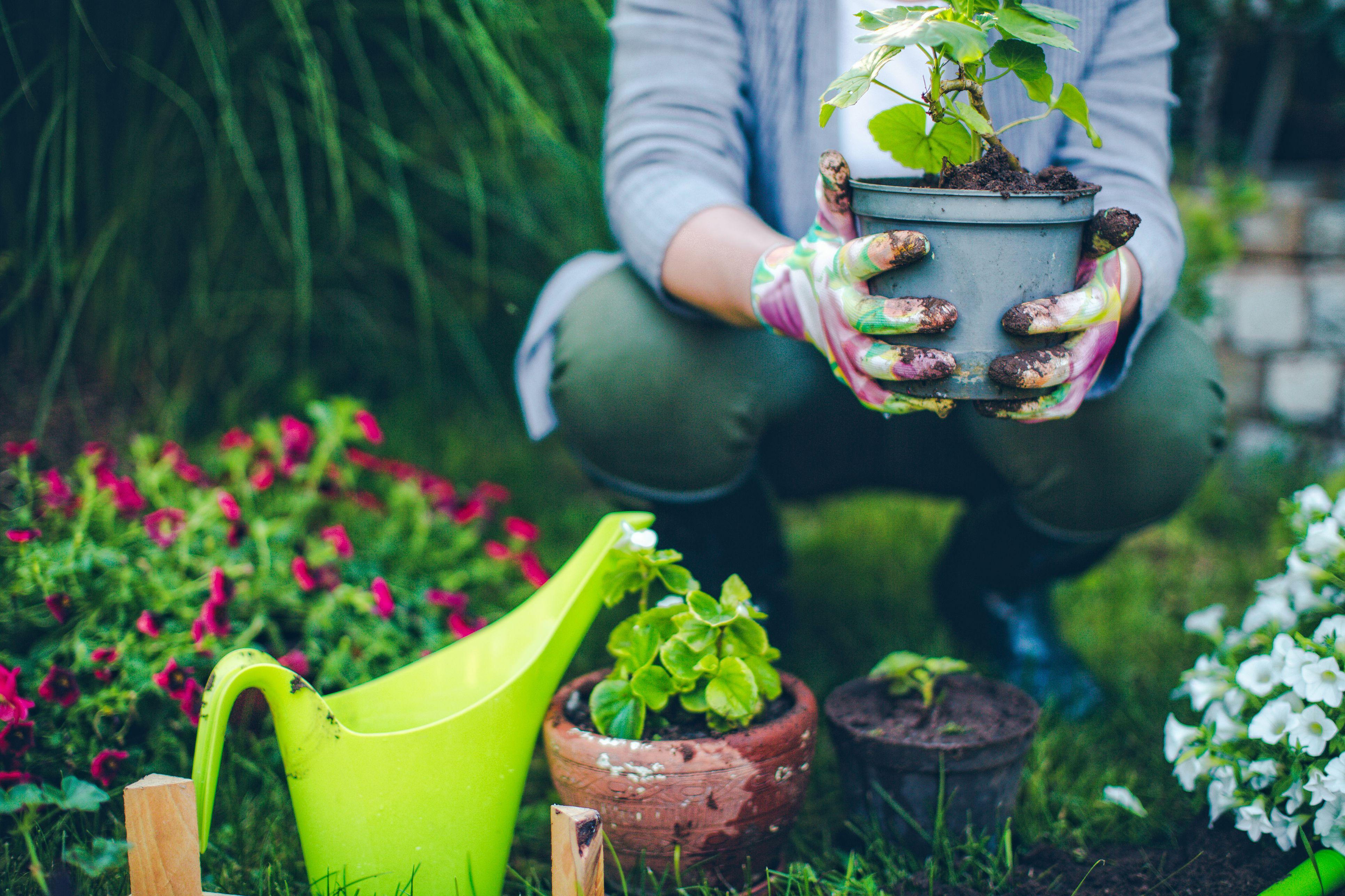 gardeners garden with gifts gardener amateur hamper best for s gift gardening dec set htm toiletries handcare