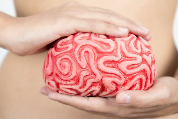 link between brain and gut