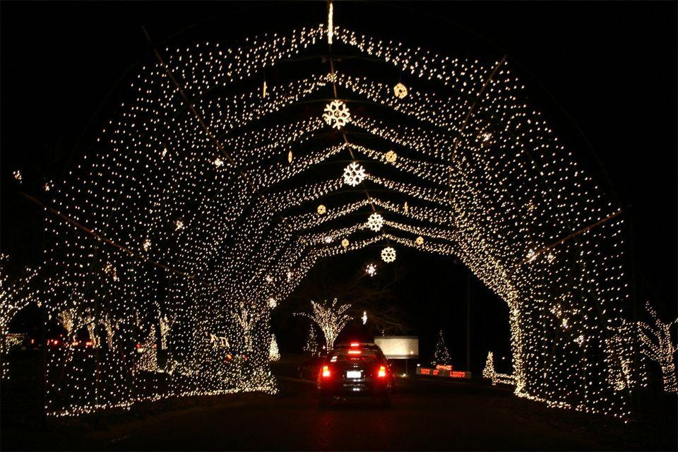 Way of Lights Christmas Display