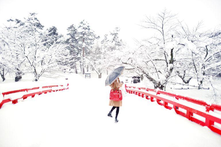 Japanese Castle Bridge in Winter