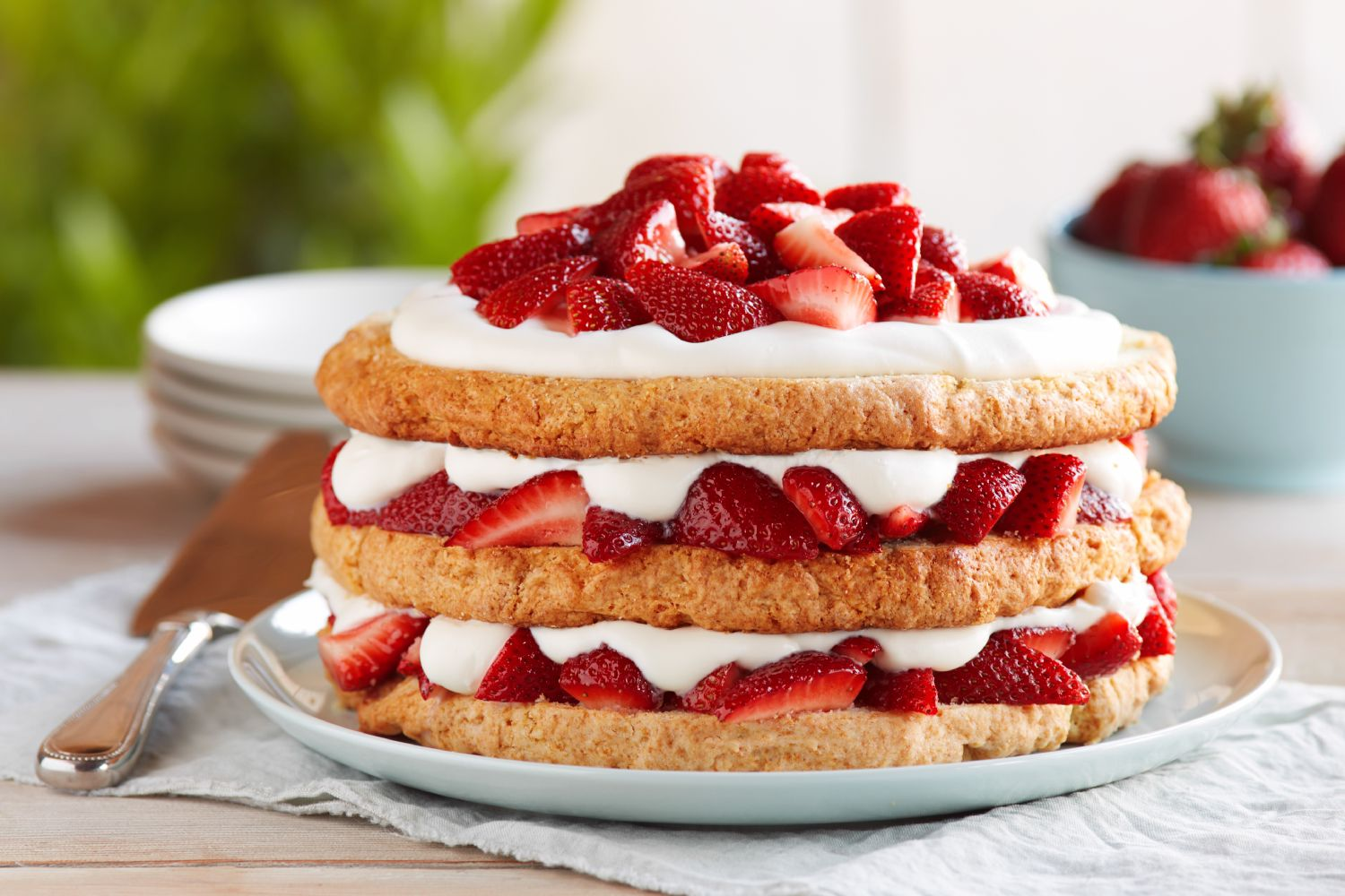 Strawberry Shortcake Games Cooking Cake