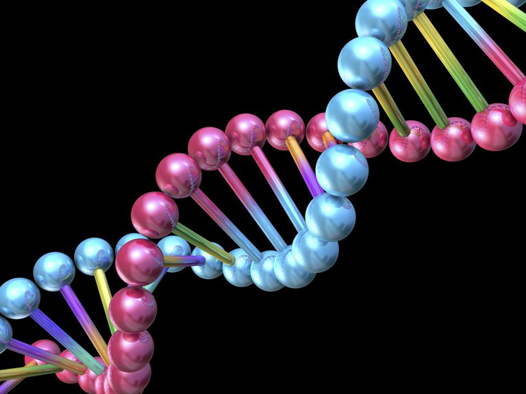 Illustration shows a double helix strand of DNA/