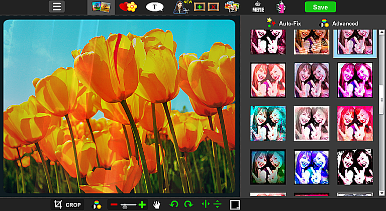 Screenshot of flowers being edited with piZap
