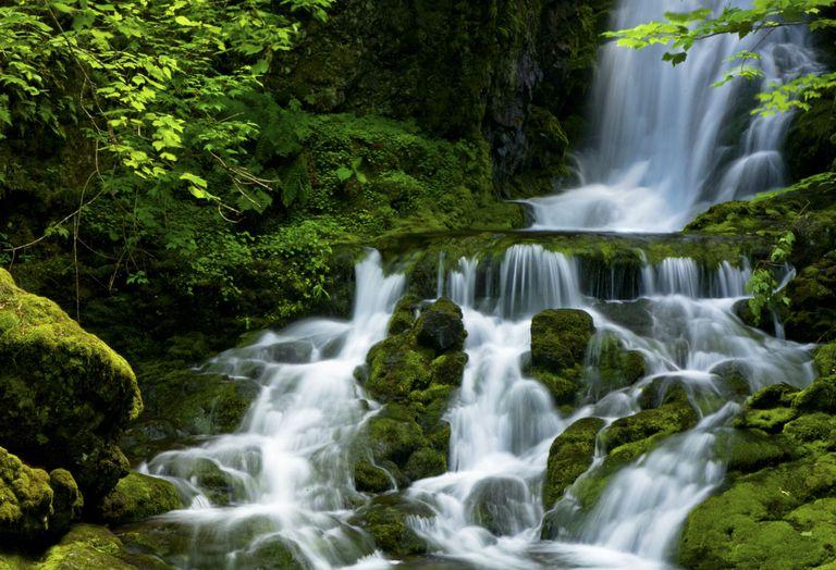 Dickson Falls, Fundy National Park