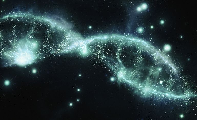 DNA in the night sky