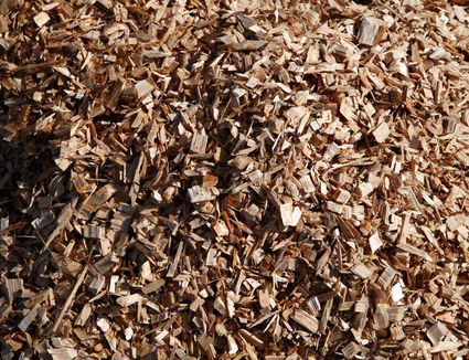 Cedar Chips And Pine Wood Shavings Bedding For Pets