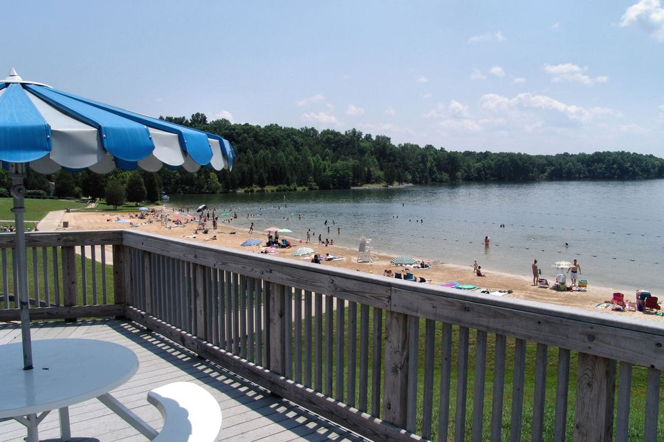 Get Outside: The Best DC-Area Swimming Holes   Swimming