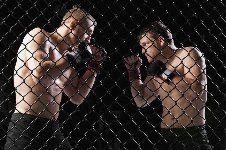 mixed martial arts fight