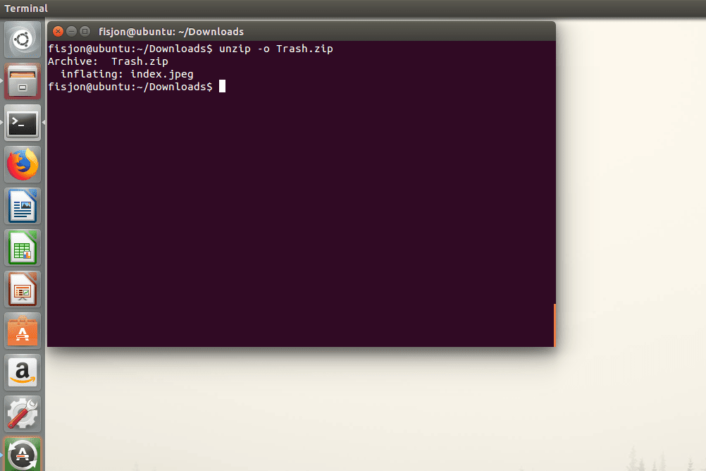 Screenshot of the -o switch used with the unzip command in Ubuntu