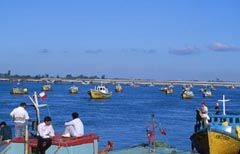 fishing boats Ancud Chiloe Chile