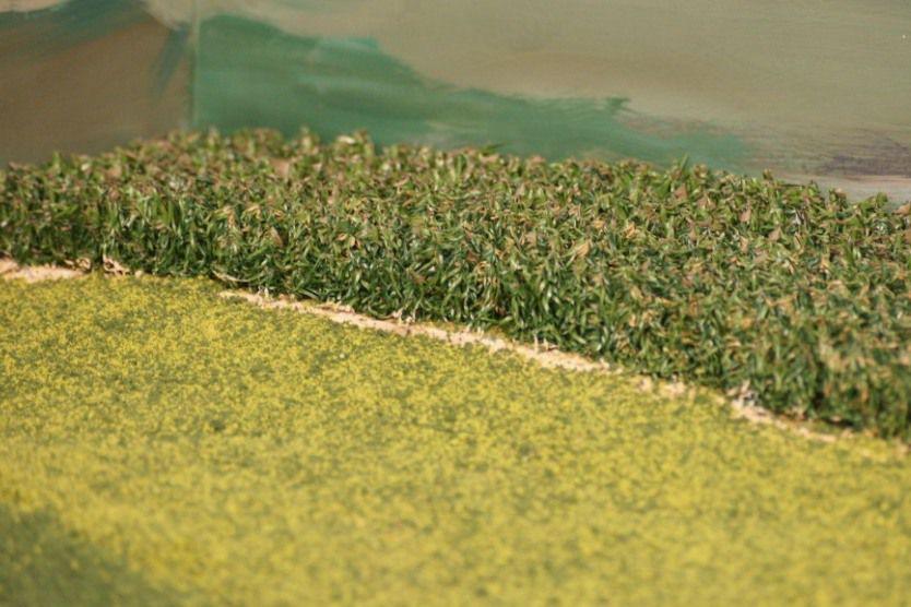 model cornfield
