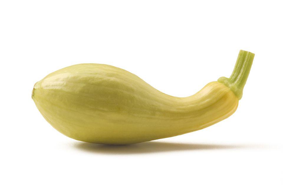 Yellow Summer Squash (Crookneck)