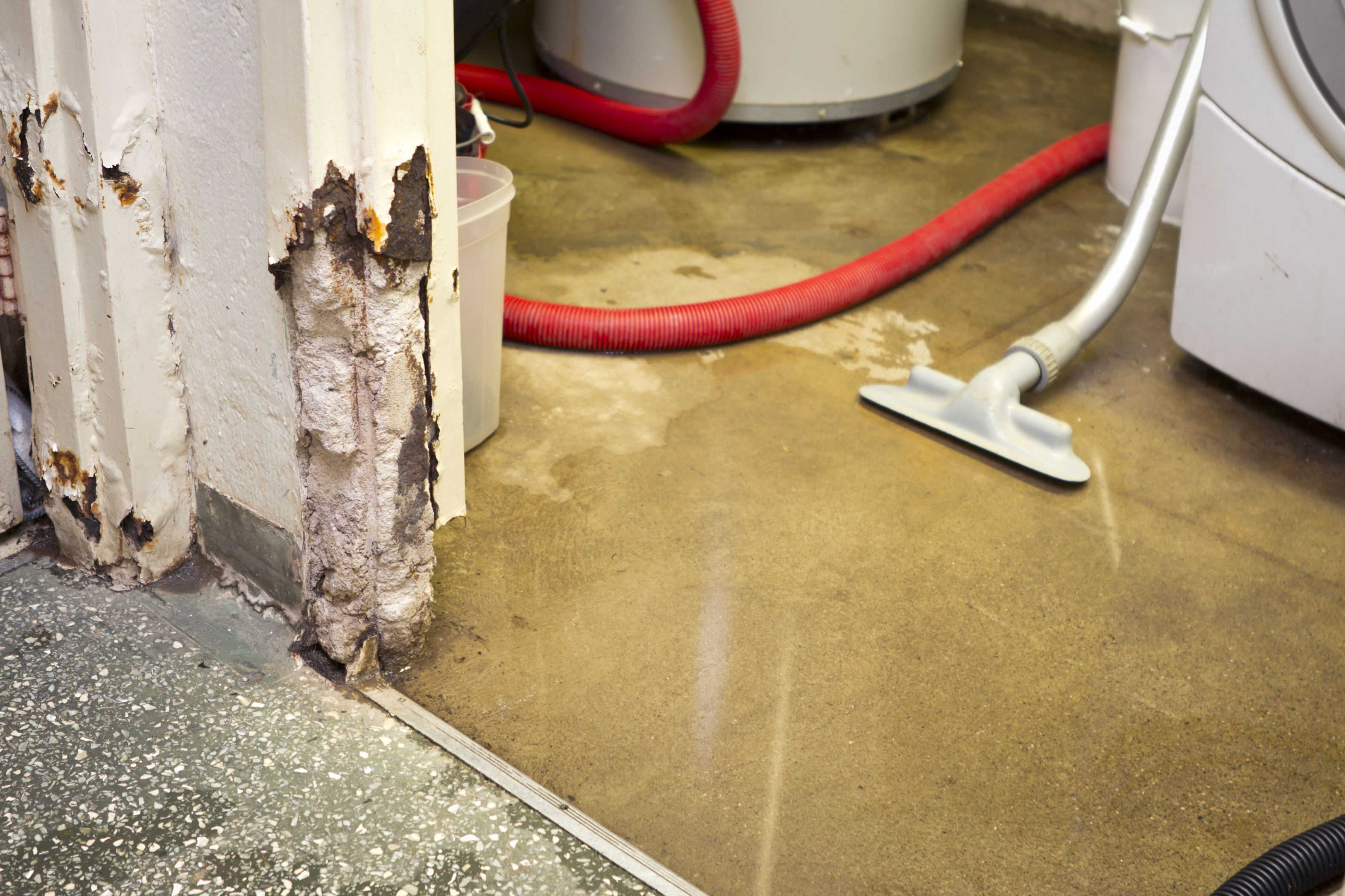 Basement flooring options for wet basements - 5 Steps To Eliminating Or Reducing Moisture In Your Basement