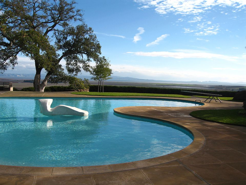 Freeform swimming pool designs and shapes for Best garden swimming pools