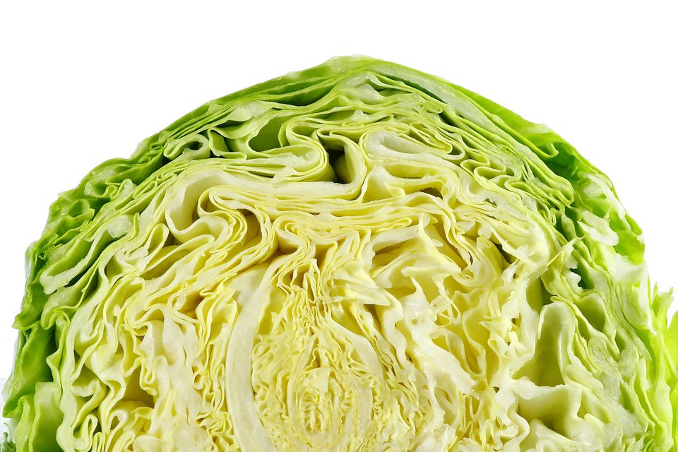 Close-Up Of Cabbage Against White Background