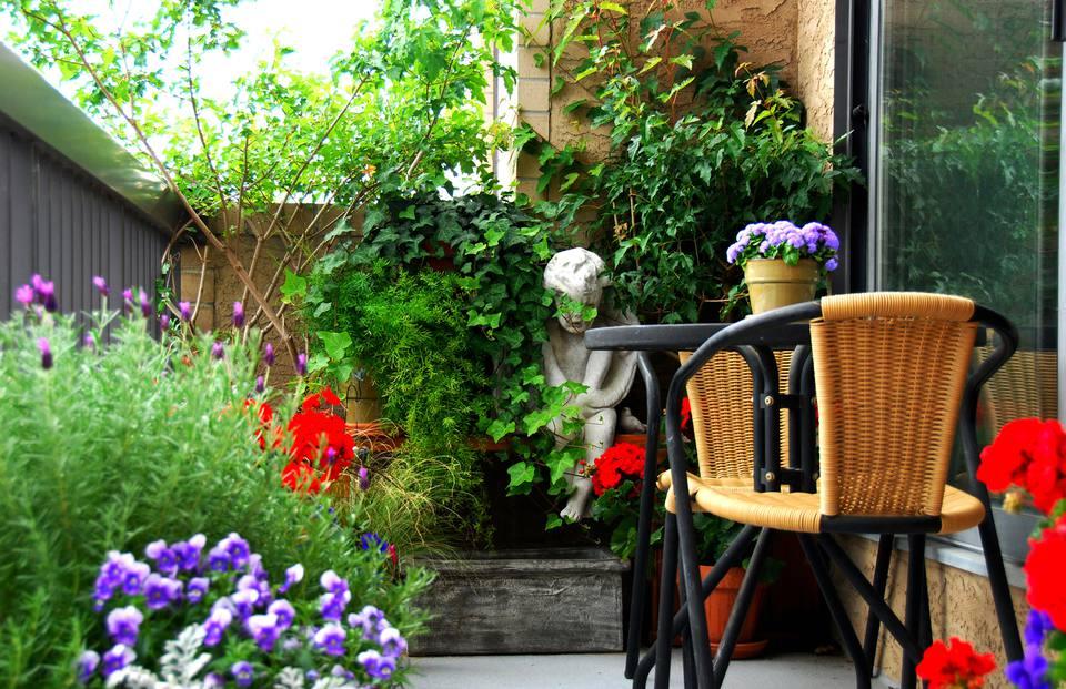 Small Space Garden