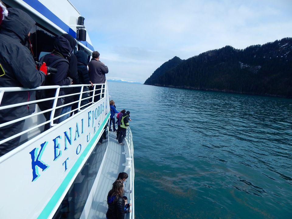 Day cruising Alaska