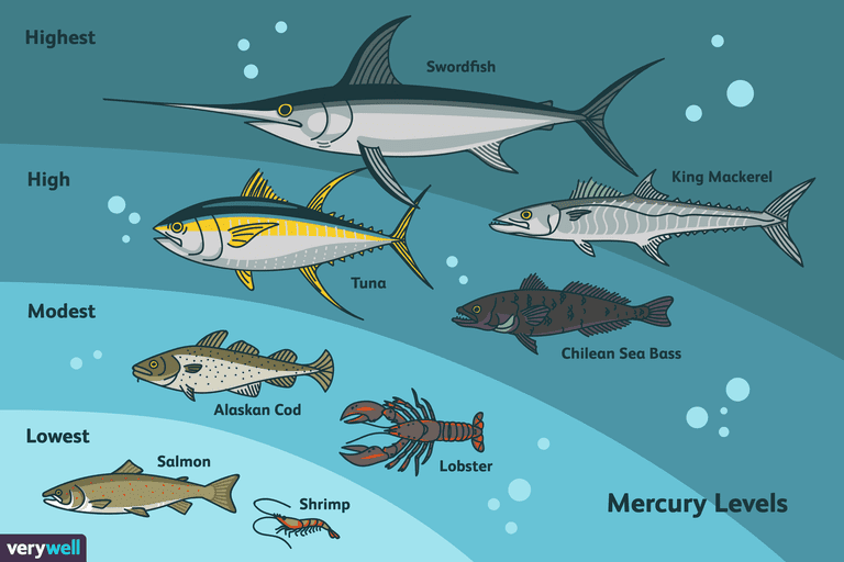 The best types of fish ranked by mercury content for Mercury levels in fish chart