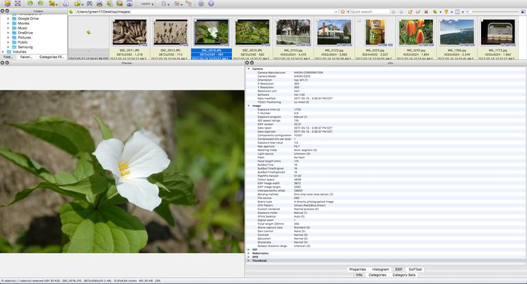 XnView MP macintosh interface is shown.