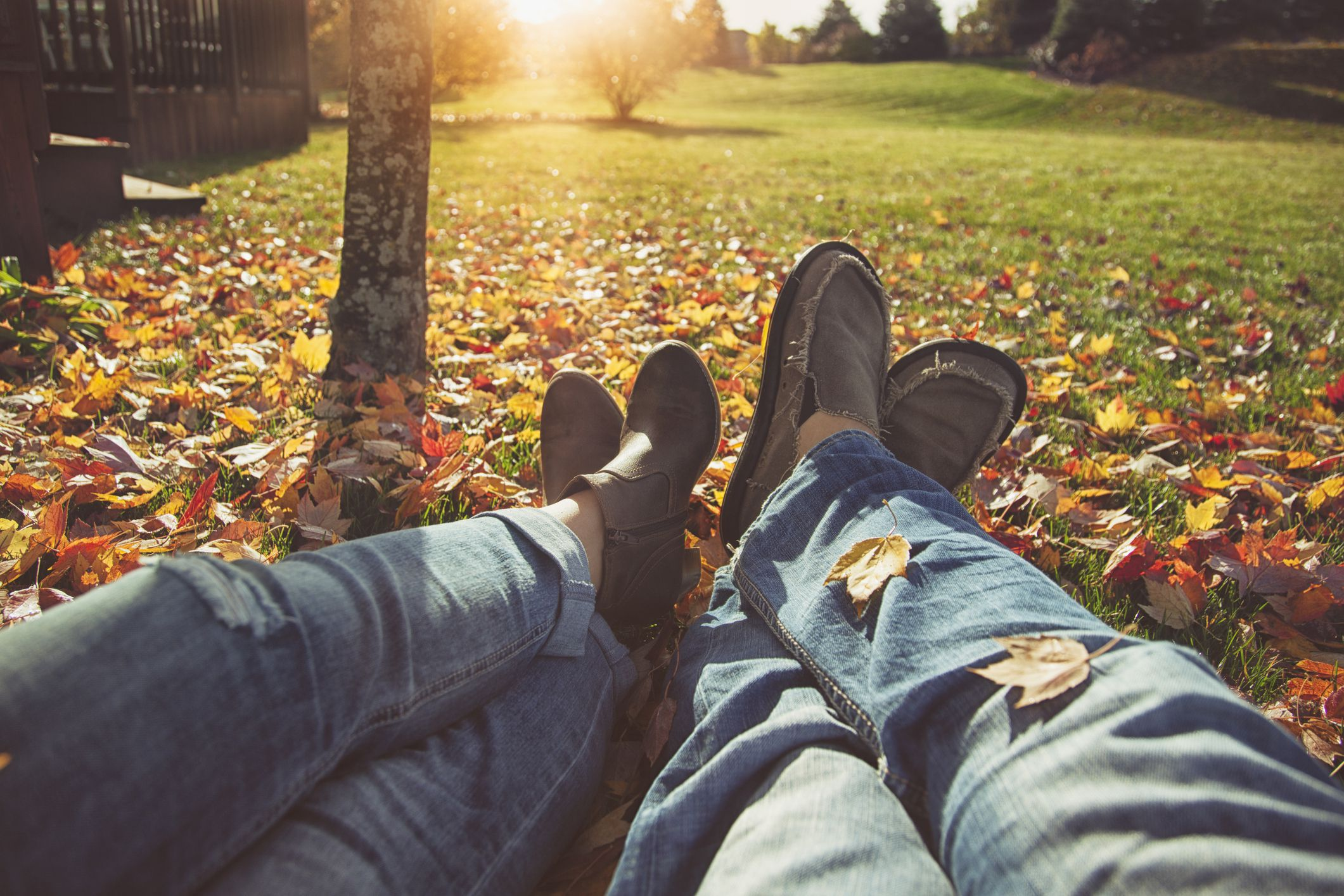 Autumn lawn and grass care tips from mowing to raking - Fall decor trends five tips to spruce up your homes ...