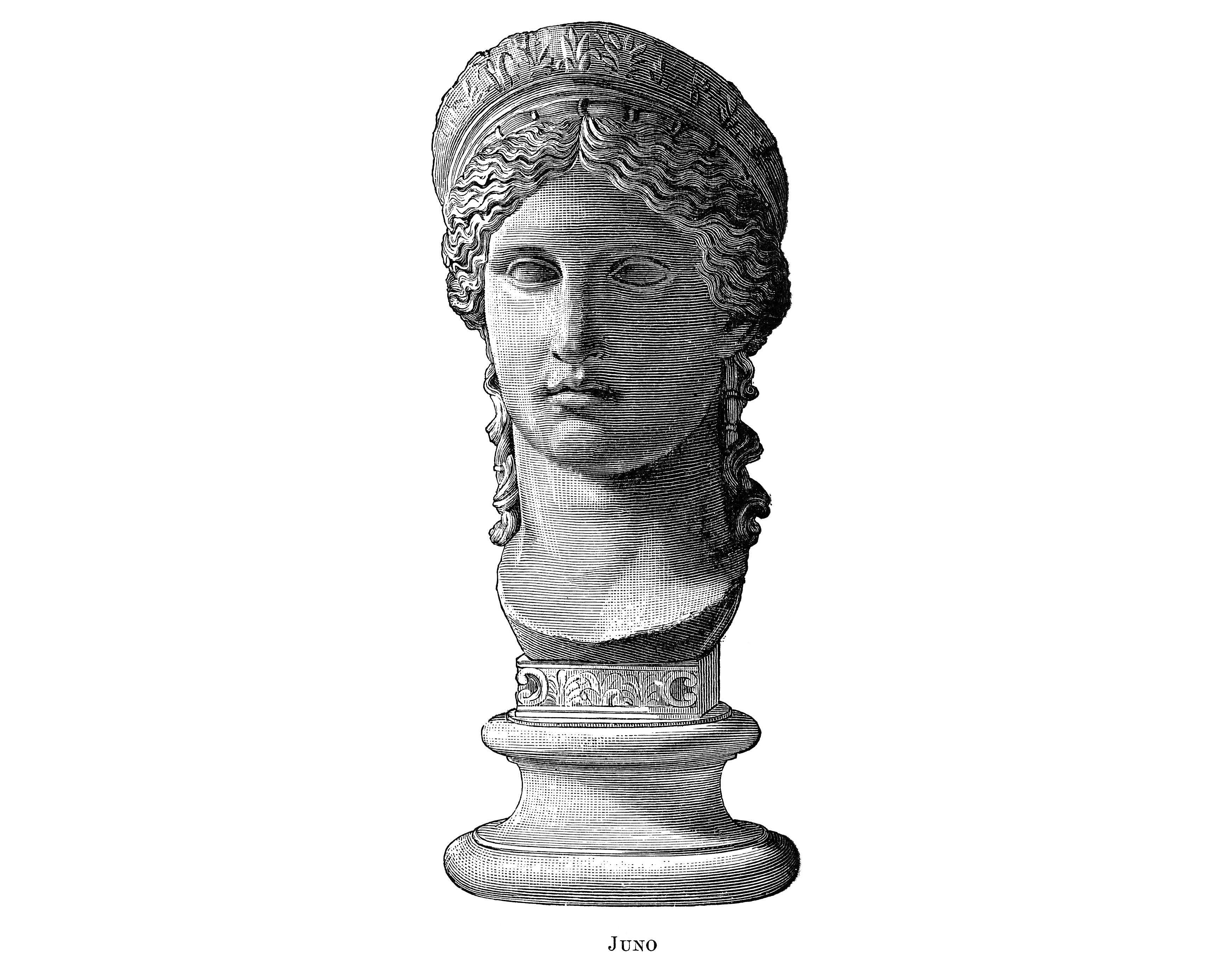 hera queen of the gods in greek mythology