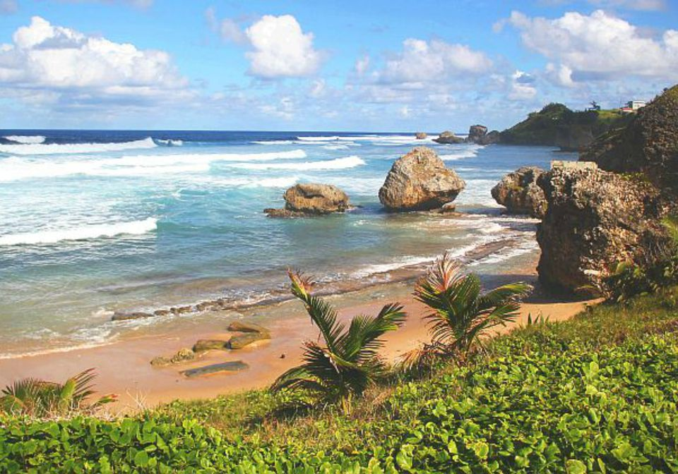 Bathsheba Park in Barbados