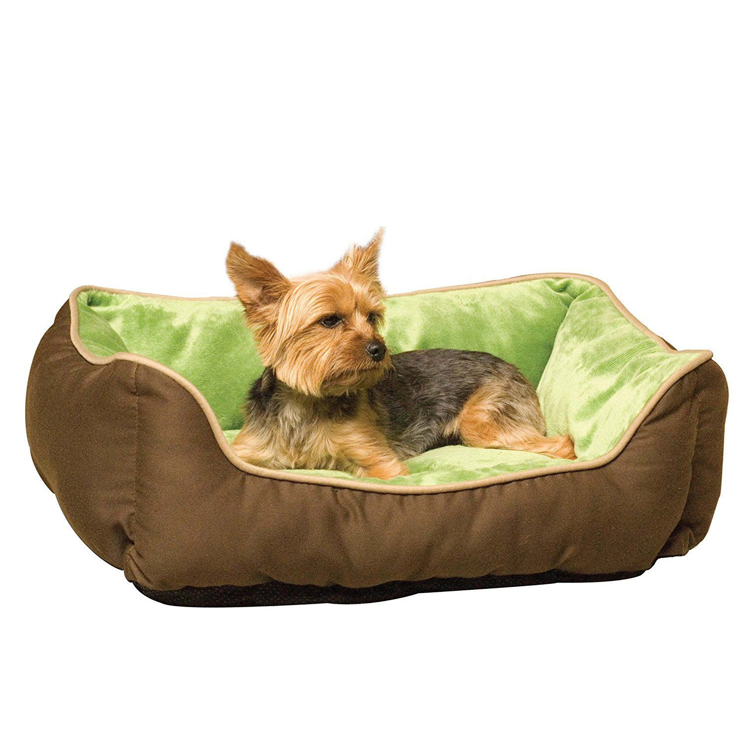 the best kinds of dog beds for your pooch