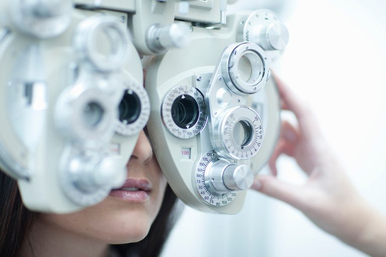 do you have what it takes to become an optometrist?, Human Body