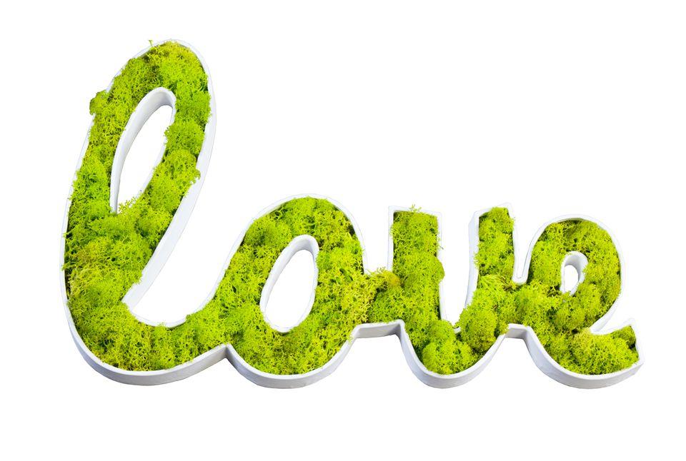 FLowrebox-DECOPATCH_LOVE_SMALLSPACES.ABOUT.COM.jpg