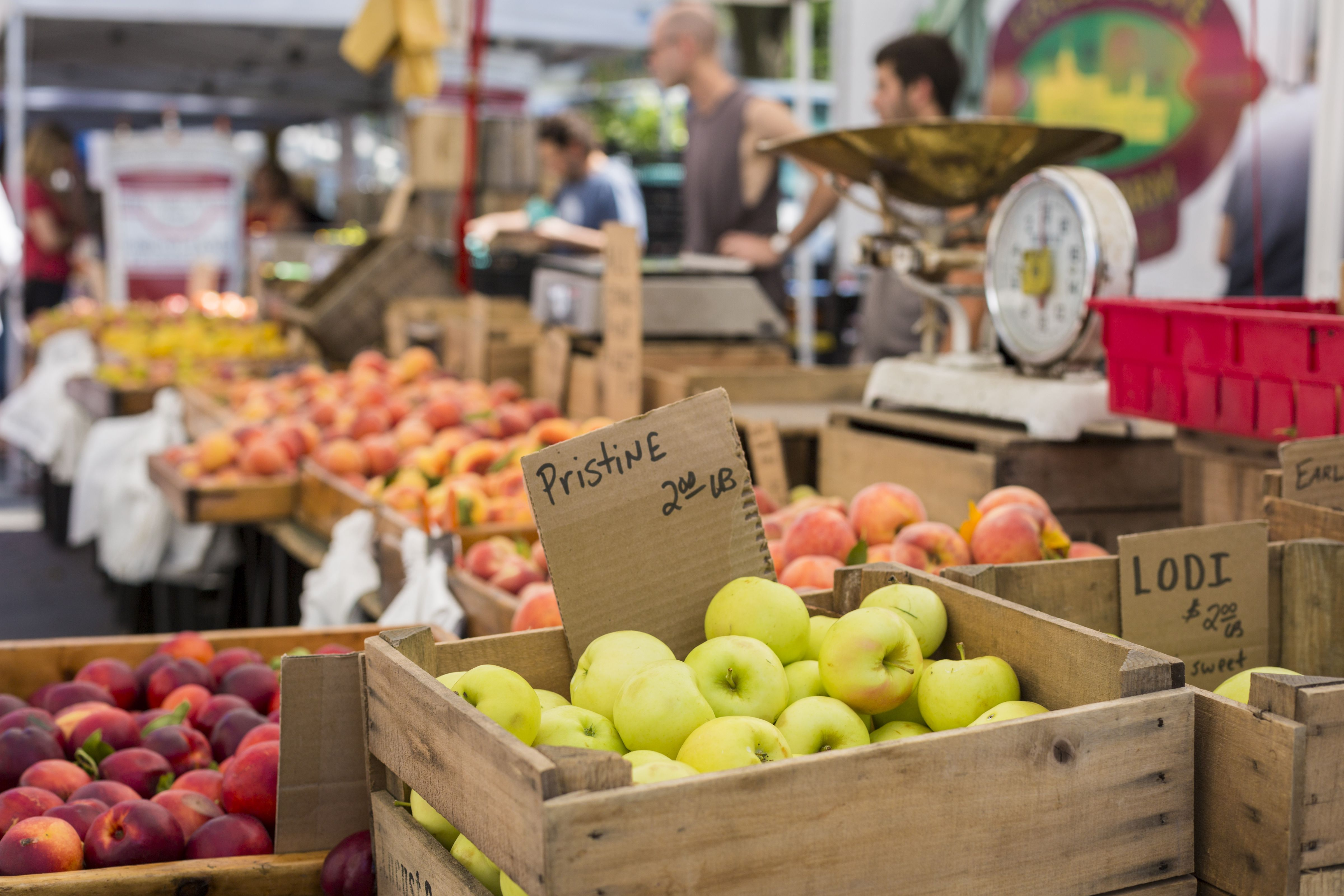 East BayOakland Farmers Markets Day By Day - The 10 freshest farmers markets in canada