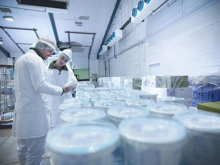 Workers with yogurt in dairy cold store