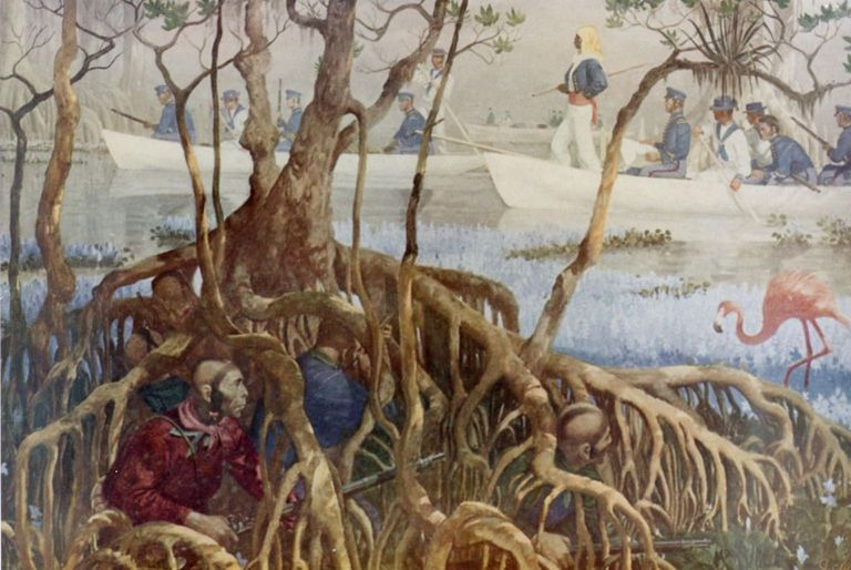 second-seminole-war-large.jpg