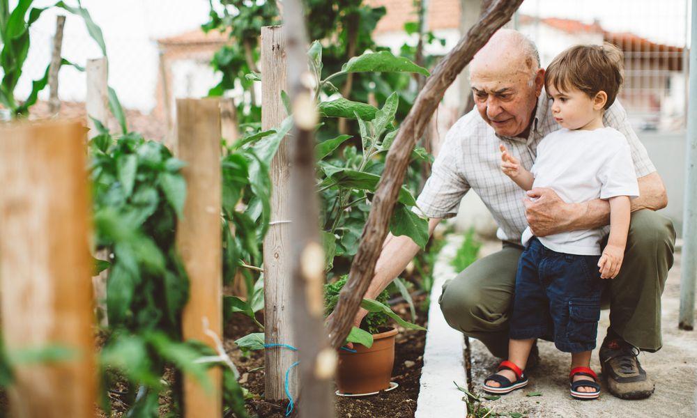 Grandparent and grandchild