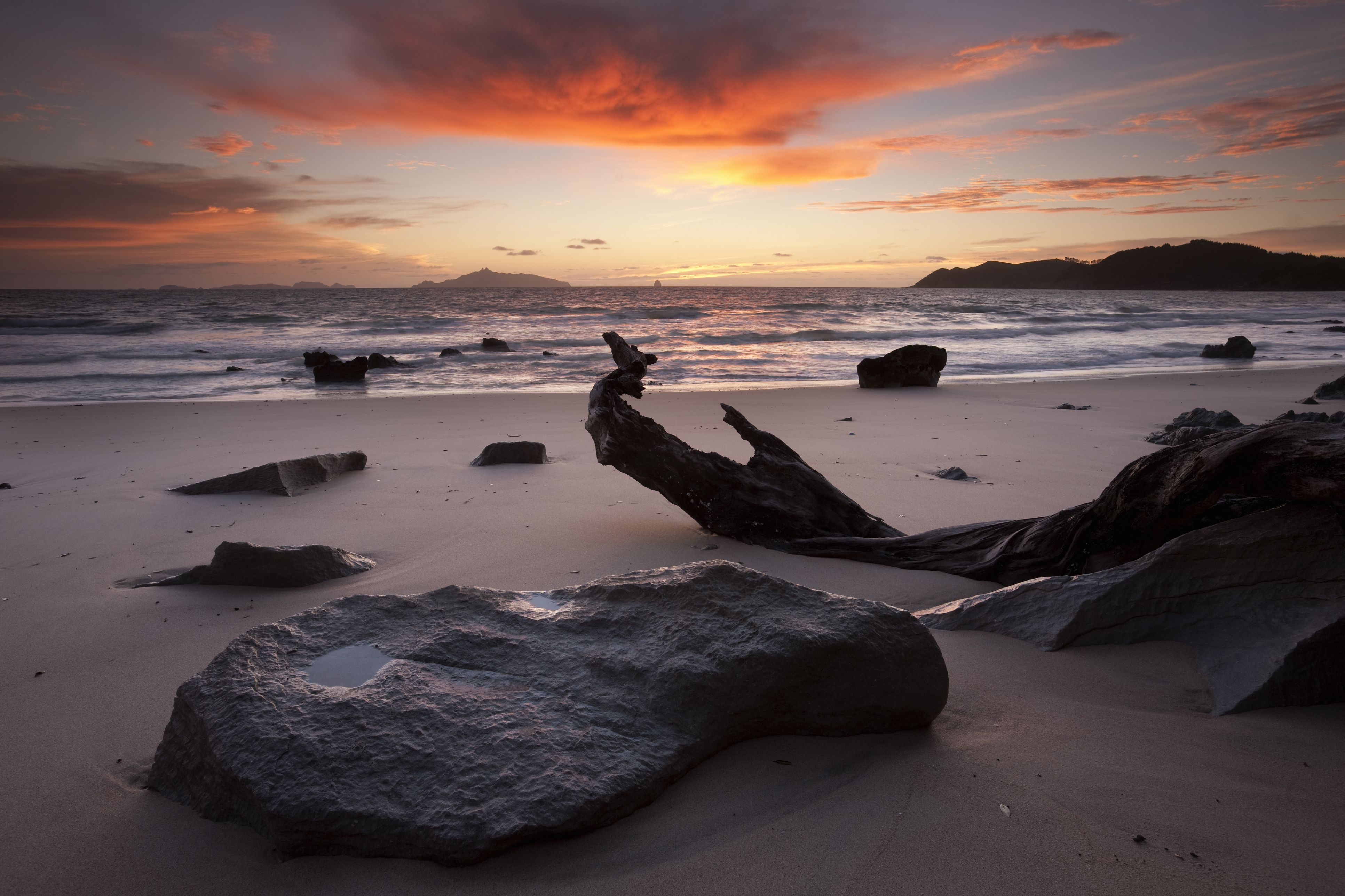 MY 5 FAVORITE BEACHES IN NORTHLAND, NEW ZEALAND
