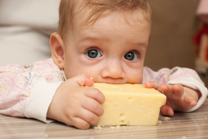 Seven-month baby eats a big piece of cheese