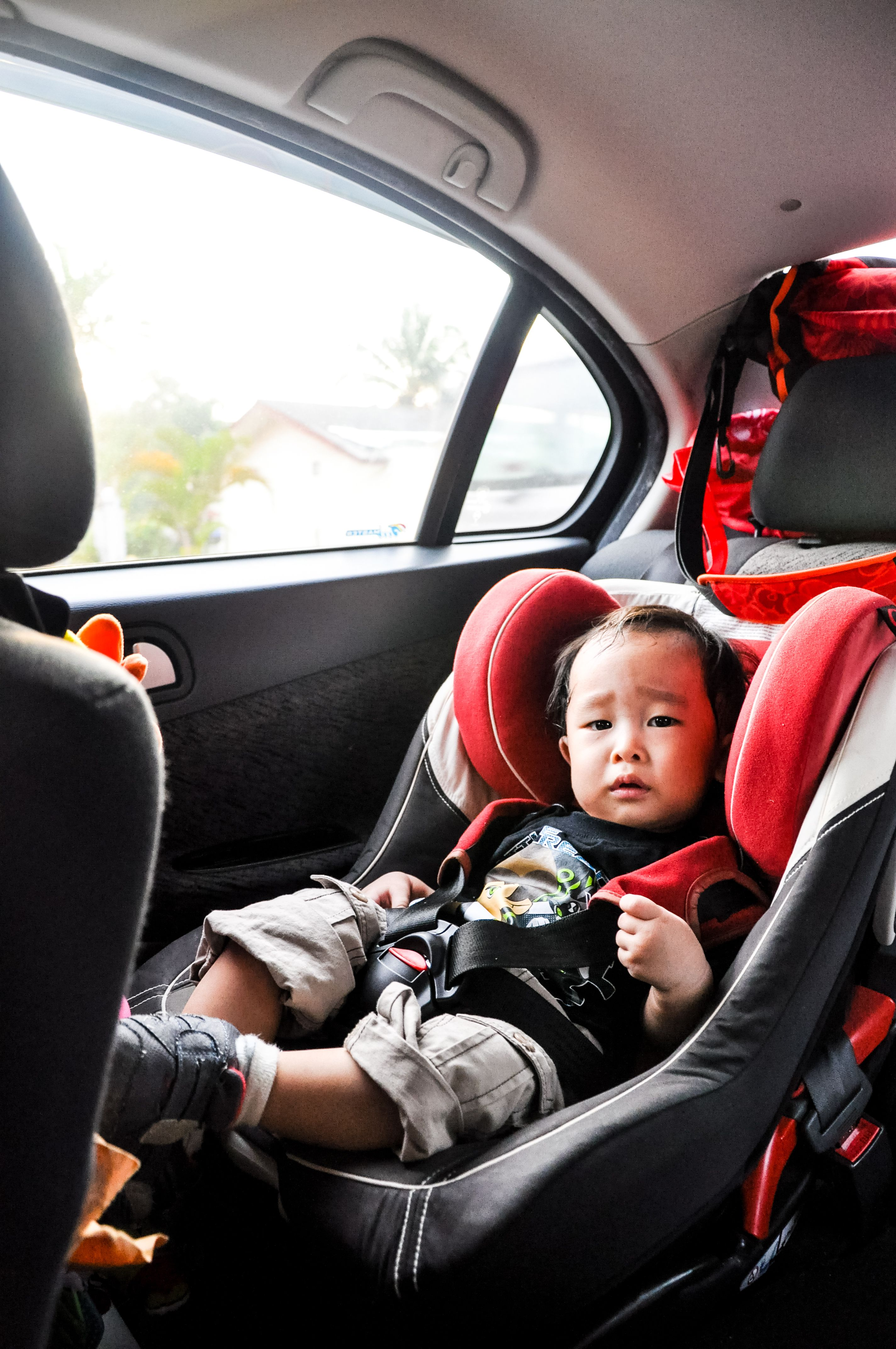 The AAP said all infants and toddlers should ride in rear-facing car seats for
