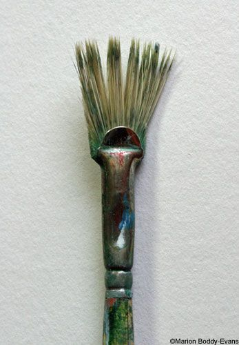 Photo of a Fan Brush with Cut Hairs