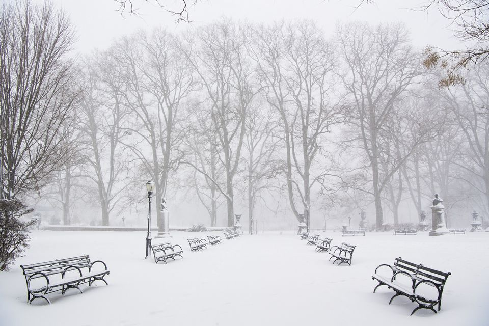 Prospect Park, Brooklyn in fresh snow, snow covered park benches