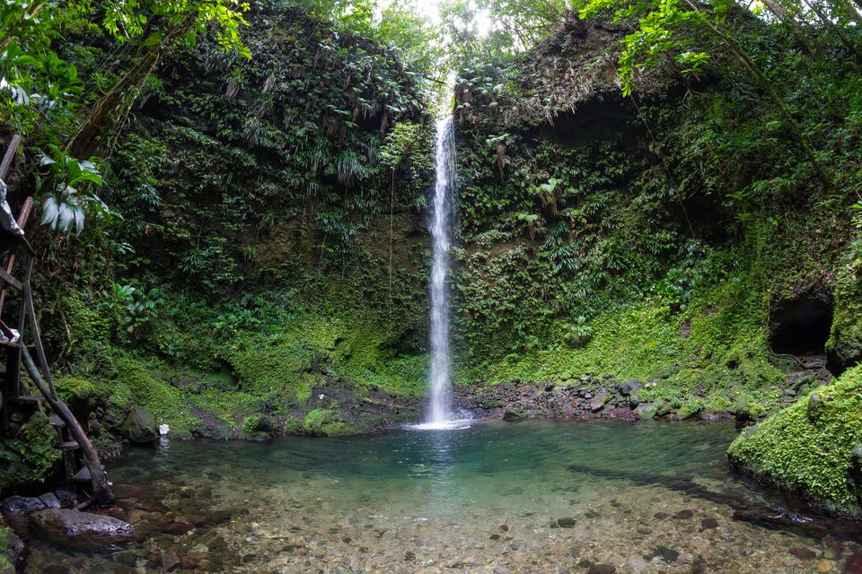Dominica waterfall