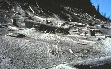 Ash-covered Landscape
