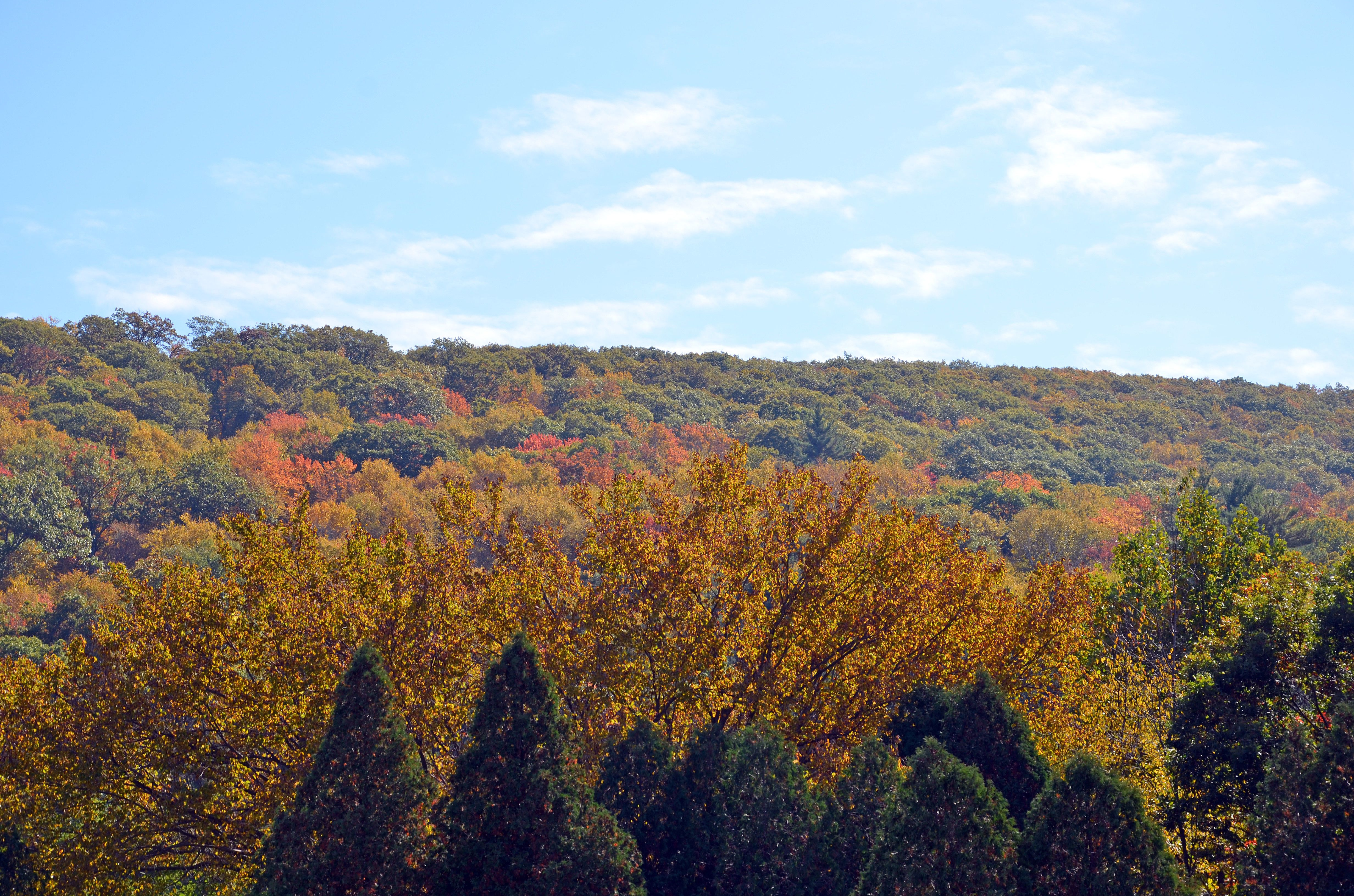 New England Foliage Central - 8 best places in the us to watch fall foliage