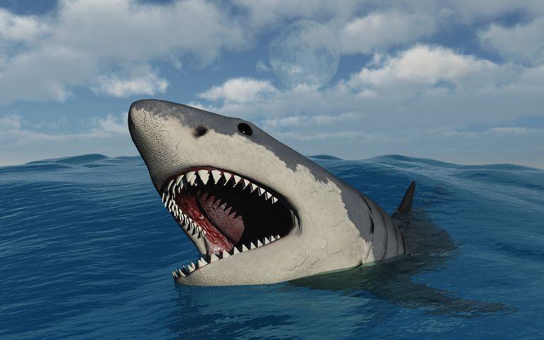 Megalodon vs. Leviathan - Who Wins?