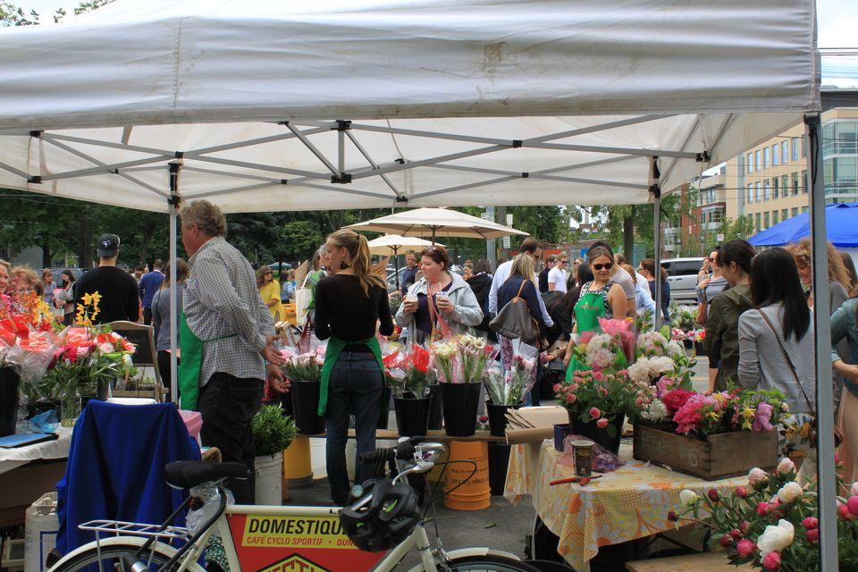 Browsing the Toronto Flower Market