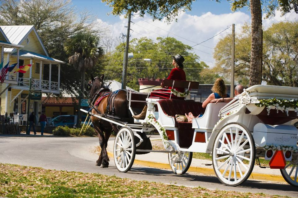 Horse drawn carriage driving down a road in St. Augustine Florida.