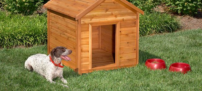 beginner dog house plan by lowes - Dog Kennel Design Ideas